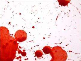Dexter Blood Splatter Safari Design Backgrounds