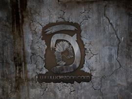 Dezoon Academy Logo Design Backgrounds