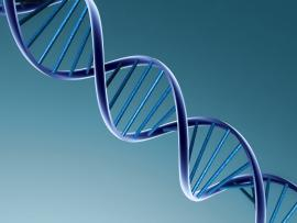 DNA 3d Border Backgrounds