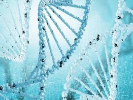 DNA Formula Sciences Backgrounds