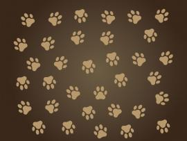 Dog Paw Print Brown Dog Paw Print Silhouette  Vectorize   Picture Backgrounds