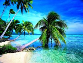 Download Tropical Beach Imagess  Desktop For   Clipart Backgrounds