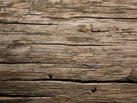 Dry Old Wood Texture image Backgrounds
