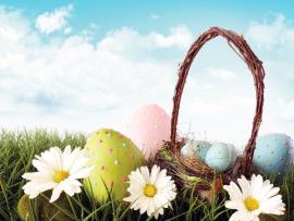 Easter Eggs With Flowers  Nature  PPT   Template Backgrounds
