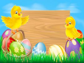 Easter With Eggs and Chickens Backgrounds