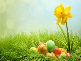 Easters Picture Backgrounds
