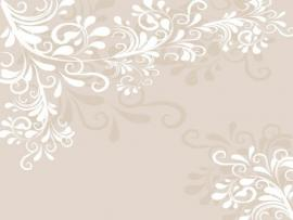 Elegant Vector Pattern Design Backgrounds