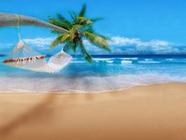 Fantastic Hawaii Art Backgrounds
