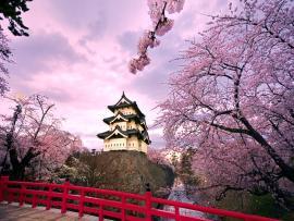 Fantastic Japanese Slides Backgrounds