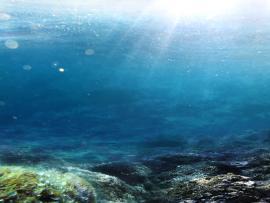 Fantastic Underwater Walpaper Art Backgrounds