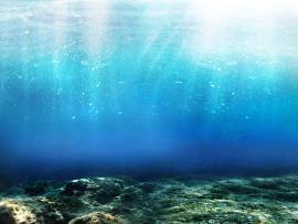 Fantastic Underwater Walpaper Hd Design Backgrounds