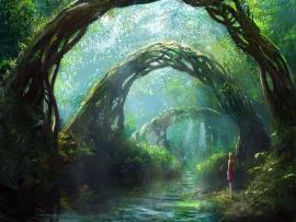 Fantasy Forest Wide Or HD  Fantasys Backgrounds