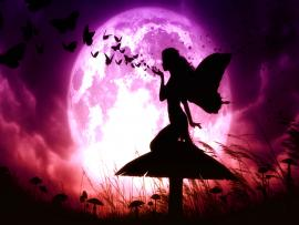 Fantasy Images Fantasy HD and Photos (32170032) image Backgrounds