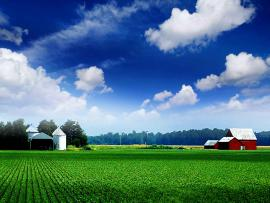 Farm Photo Design Backgrounds