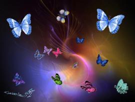 Flies  Butterflies Clip Art Backgrounds