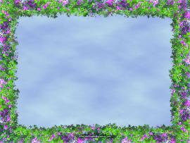 Floral Border Frame Wallpaper Backgrounds