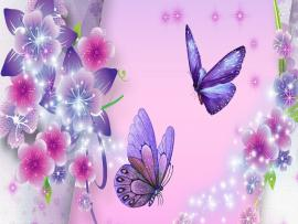 Floral Decorations With Butterfly Picture Backgrounds