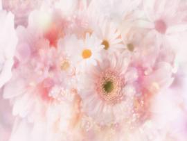 Flower 1 Flower 2 Flower 3 Art Backgrounds