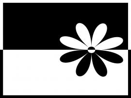 Flower Black and White Design Backgrounds