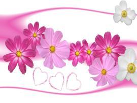 Flower Border Clipart Backgrounds