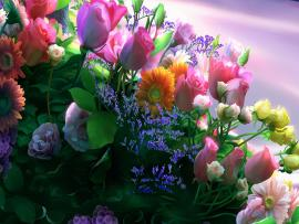 Flowers Art Backgrounds