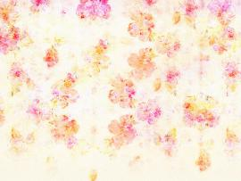 Flowers On White For PowerPoint  Flower   Presentation Backgrounds