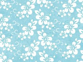 Flowers Pattern Blue Quality Backgrounds