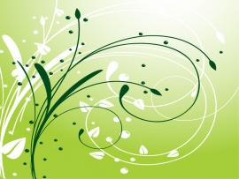 Flowery Simple Swirls Quality Backgrounds