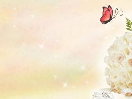 Free Butterfly and Roses For   Love  Wallpaper Backgrounds