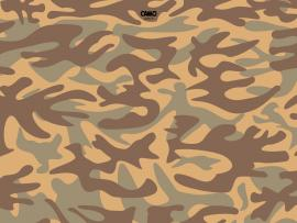 Free Camo Frame Backgrounds