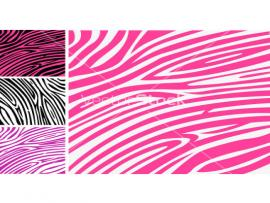 Free Zebra Animal Template For PowerPoint Animal PPT   Quality Backgrounds