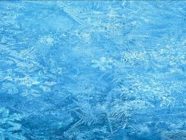 Frozen  Mobile9 Quality Backgrounds