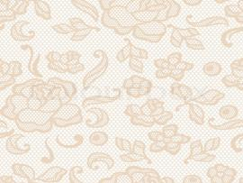 Go Back > Gallery For > Cream Lace Graphic Backgrounds