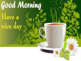 Good Morning Design Backgrounds