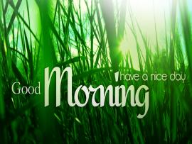 Good Morning Have Nice Day Presentation Backgrounds