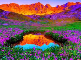Gorgeous landscape colors Backgrounds