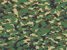 Green Effect Camouflage Slides Backgrounds