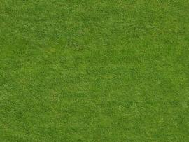 Green Field Sports Art Backgrounds