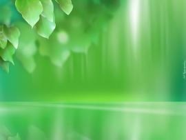 Green Graphic Frame Backgrounds