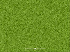 Green Grass 23 2147513406 Jpg Backgrounds