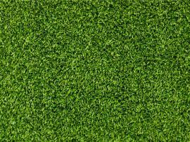 Green Grass Texture Hd  List Quality Backgrounds