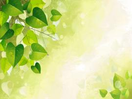 Green Vector Art Leaf Hd Picture Backgrounds