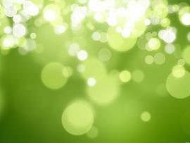 Green Wallpaper Backgrounds
