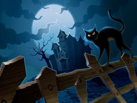 Halloween Frame Backgrounds
