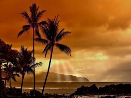 Black And White Free Christian Clip Art Hawaiian PPT Bac...
