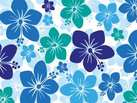 Hawaiian Hibiscus Backgrounds