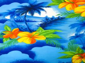 Hawaiian Photo Graphic Backgrounds