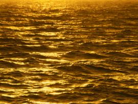 Hd Golden Romantic Frame Backgrounds