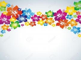 Hibiscus Colorful Clipart Backgrounds