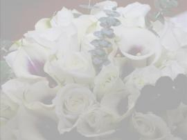 Home > Wedding Floral 1 Design Backgrounds